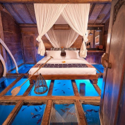 The-Glass-Floor-Udang-House-Bali-Indonesia